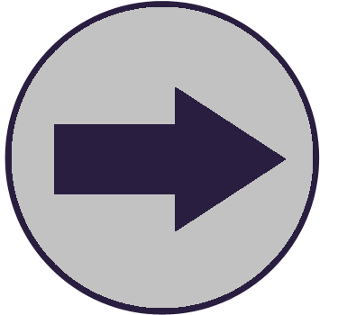 Next Section navigation button